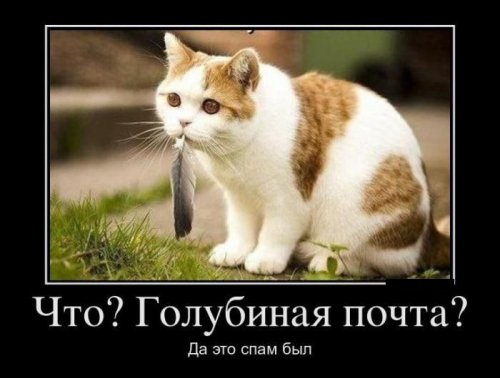 http://www.bugaga.ru/uploads/posts/2012-07/thumbs/1341298309_demotivatory-5.jpg