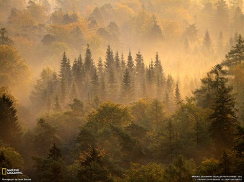 ���� ��� �������� ����� �� National Geographic (30 ����)