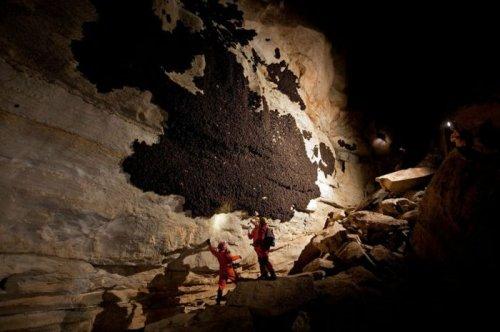 Загадка дня: что с этой стеной в пещере?