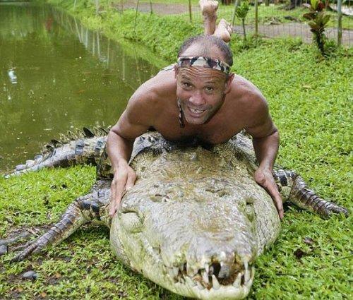 Ручной крокодил