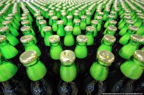 Как делают пиво Хайнекен