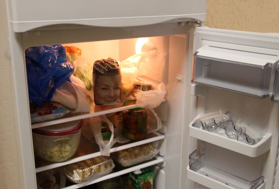 Приколы картинки про холодильник
