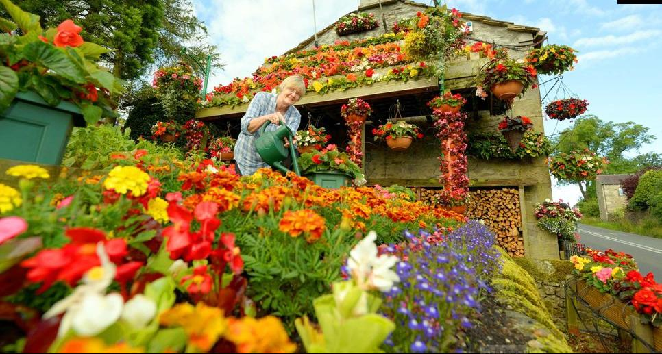 Цветы сады любви