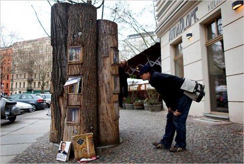 Общественные книжные шкафы