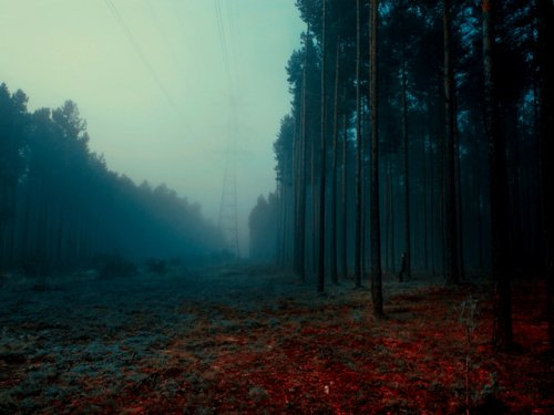 Фантастические пейзажи от Барбары Флорчик