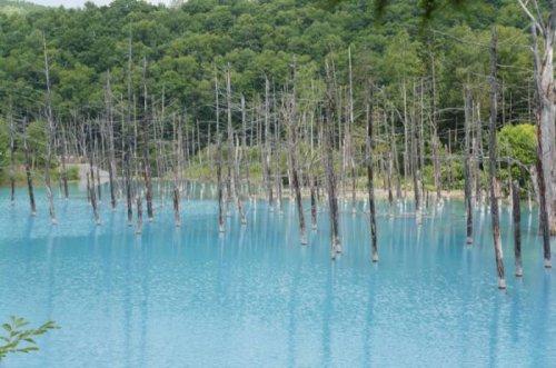 """Удивительный """"Синий пруд"""" в Японии"""