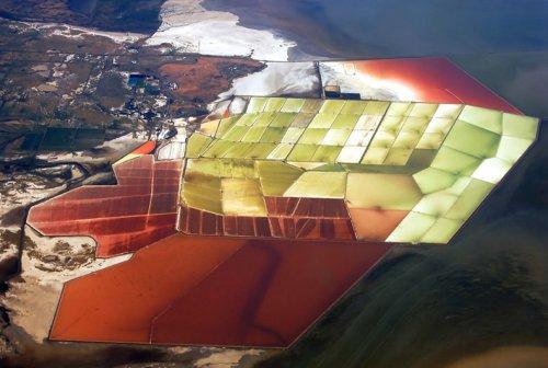 Разноцветные соляные пруды в заливе Сан-Франциско
