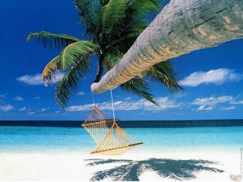 Идеальные для отдыха в гамаке места
