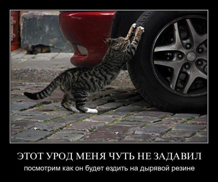 чернобыльский юмор