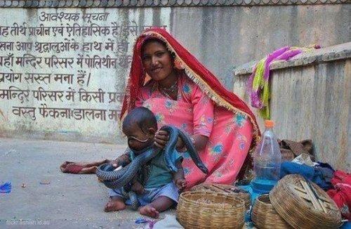 Только в Индии (40 фото)