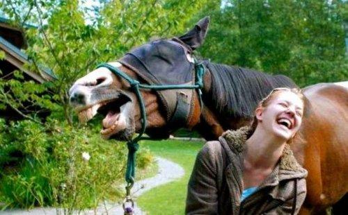 Пятничный юмор в фото и картинках (42 шт)