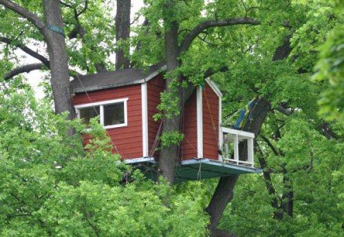 Удивительные дома на деревьях