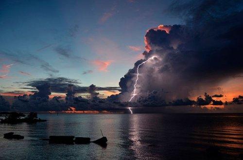 Некоторые работы, представленные на конкурс фотографий National Geographic 2012