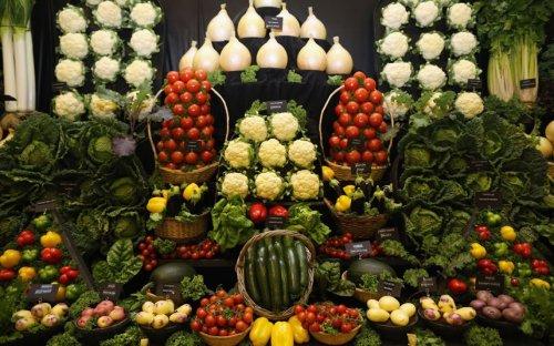 Репортаж с осенней выставки цветов и овощей в Харрогейте