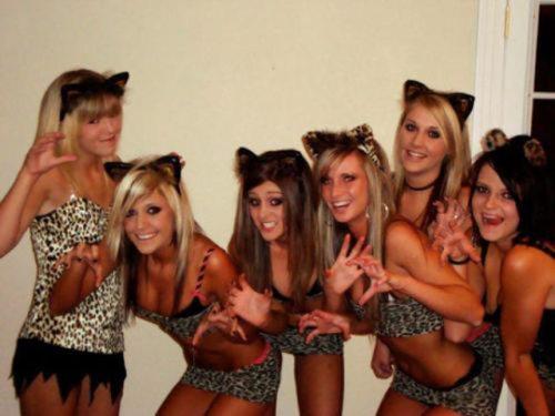 Девушки в кошачьих образах