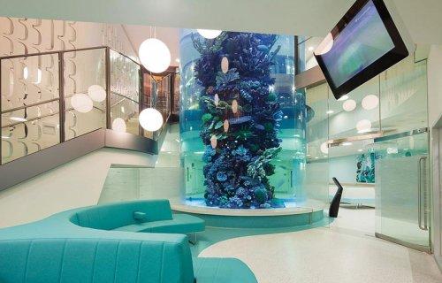 Разноцветные интерьеры в детских больницах