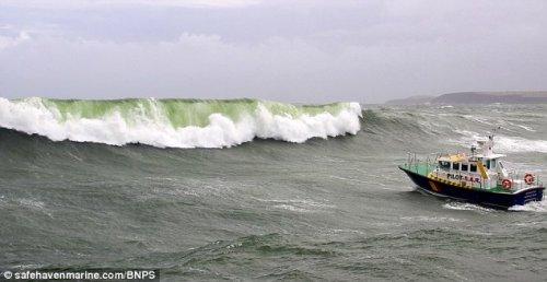 Судно vs волна: в чью пользу счет?