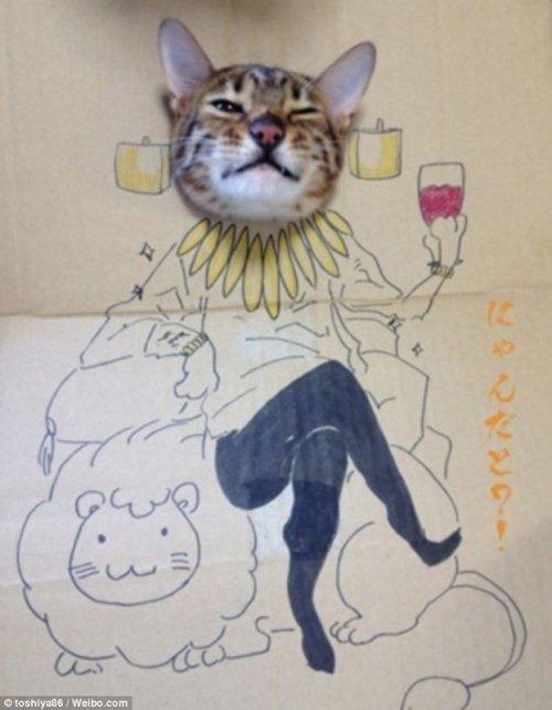 Косплей для любимой кошки