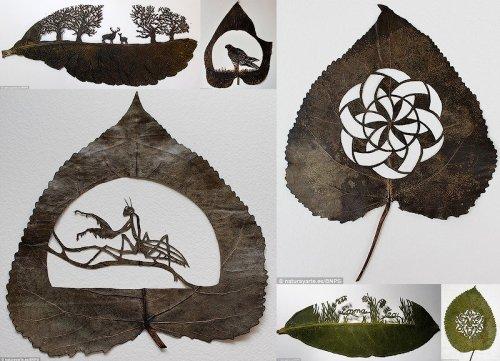 Удивительные сюжеты художника Лоренцо Силвы, вырезанные в листьях