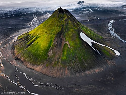 ����������-���������� �������� Veolia Environment Wildlife Photographer of the Year 2012