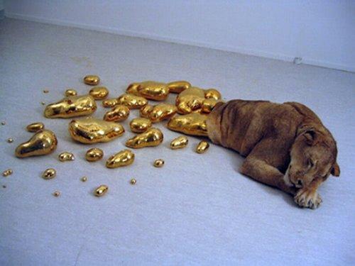 Золотые фотографии (39 шт)