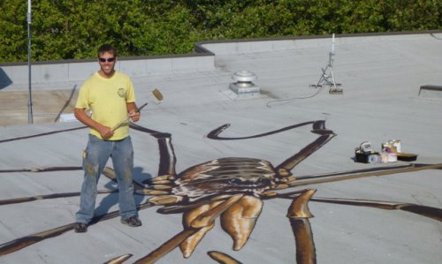 Огромные пауки-сенокосцы оккупировали оружейный склад Сиэтлского Центра