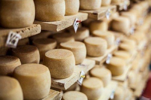 Селиская сыроварня Петра Пригары – реализованная мечта