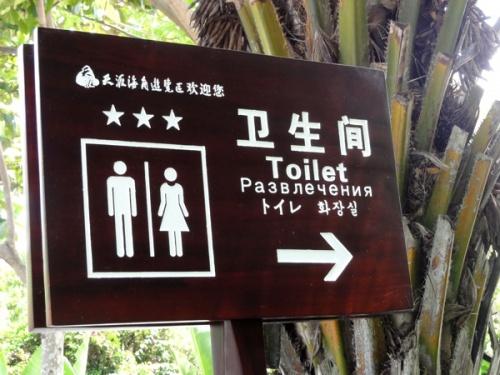 Новые китайские надписи (49 шт)