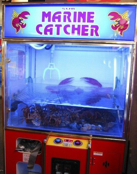рыбки игровые автоматы