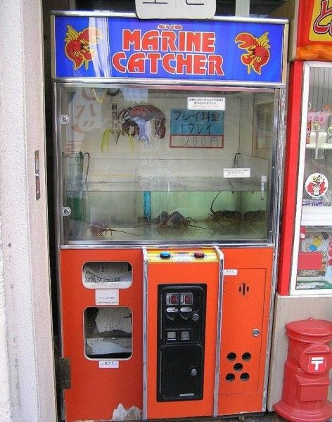 Игровой автомат супер лягушка