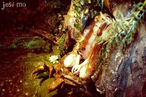 «Лесная фея» – сказочное кафе в Барселоне