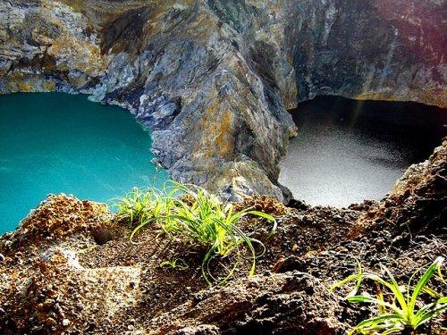 http://www.bugaga.ru/uploads/posts/2012-11/thumbs/1352300044_kelimuturu-3coloured-lake-in-indonesia-8.jpg