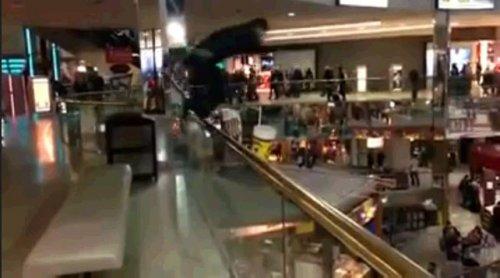 Прыжок в бассейн в торговом центре