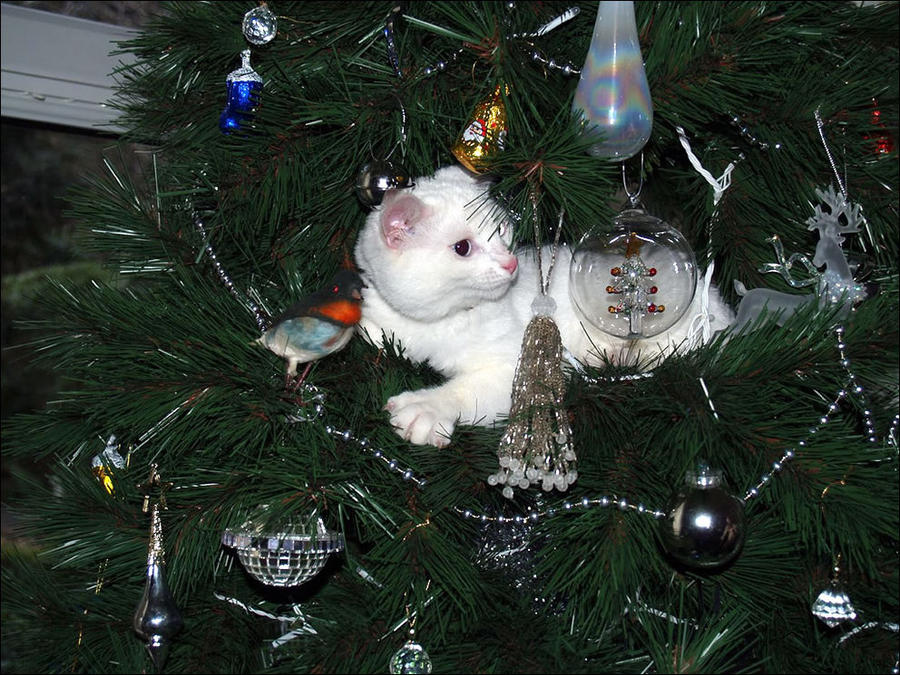 для снежок украшал елку как мог фото еще дорого начальство