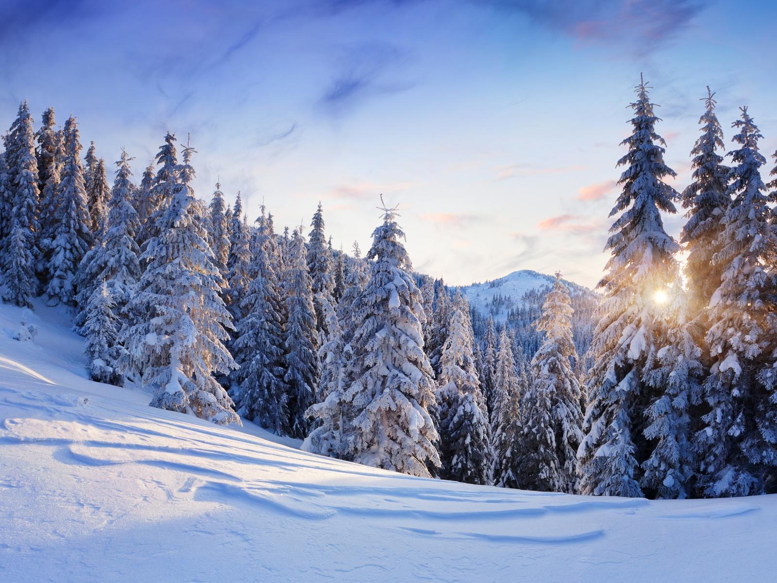 Фото с большим разрешением зима
