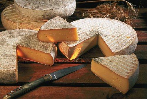 12 Интересных фактов о сыре