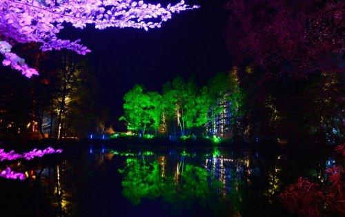 Разноцветные огни световых шоу 2012-го года