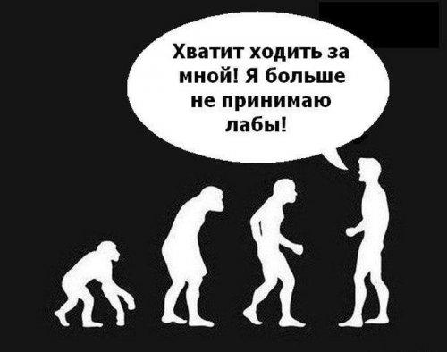 Фото приколы онлайн (53 шт)
