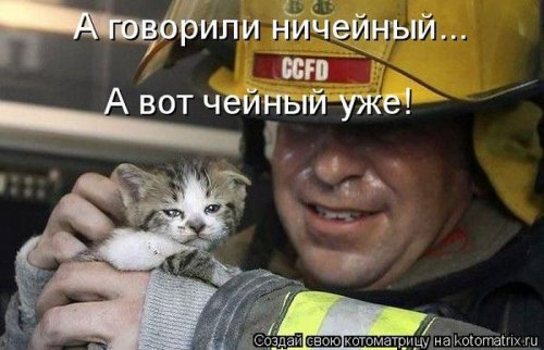 http://www.bugaga.ru/uploads/posts/2012-12/thumbs/1356107364_super-kotomatricy-41.jpg