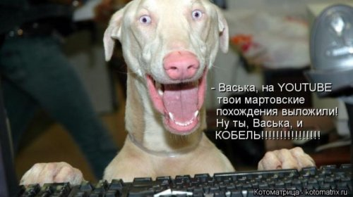 http://www.bugaga.ru/uploads/posts/2012-12/thumbs/1356107386_super-kotomatricy-42.jpg