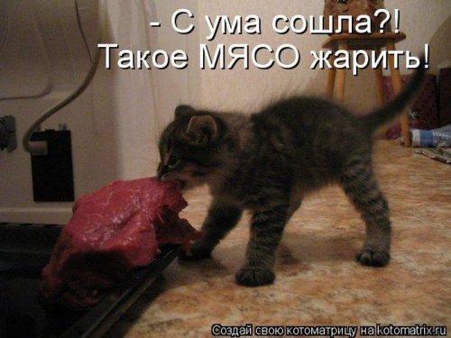 http://www.bugaga.ru/uploads/posts/2012-12/thumbs/1356107387_super-kotomatricy-27.jpg