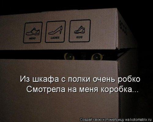 http://www.bugaga.ru/uploads/posts/2012-12/thumbs/1356107422_super-kotomatricy-16.jpg