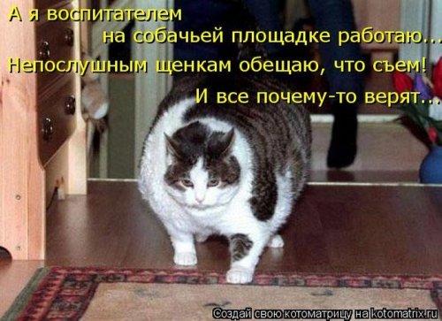 http://www.bugaga.ru/uploads/posts/2012-12/thumbs/1356107430_super-kotomatricy-31.jpg