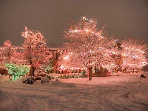 Красочные рождественские огни (46 фото)