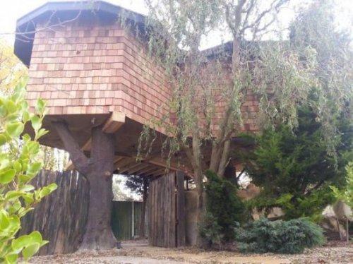 Роскошный дом на дереве за $100 000, не уступающий по комфорту 5-звёздочному отелю