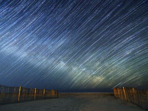 45 Лучших фотографий года от National Geographic