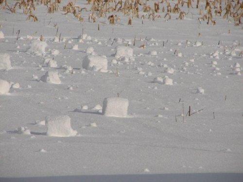 Снежные валики – редкое природное явление