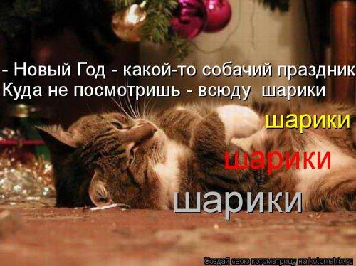 Классные котоматрицы (37 шт)