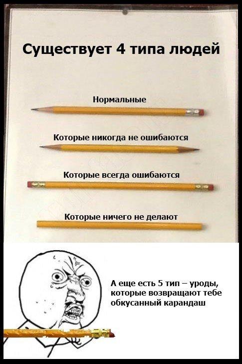 истории приколы: