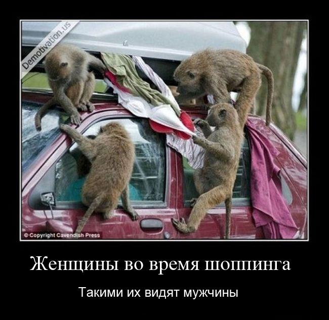 http://www.bugaga.ru/uploads/posts/2013-01/1358414434_demotivatory-9.jpg